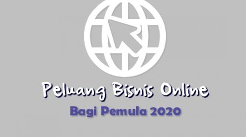 Peluang Bisnis Online Untuk Pemula 2020